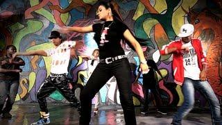 Turdi Pub | Rimz J* feat. Tigerstyle | Desi Jatti | Brand new Song 2013