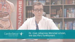 Dr. med. Johannes Wimmer erklärt, wie das Herz funktioniert