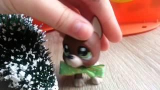 "LPS : ""Zakręceni"" #12 Littlest Pet Shop !"
