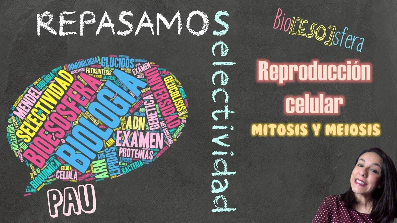 Repasando Selectividad PAU Biología : Reproducción celular: Meiosis y mitosis - Bio[ESO]sfera