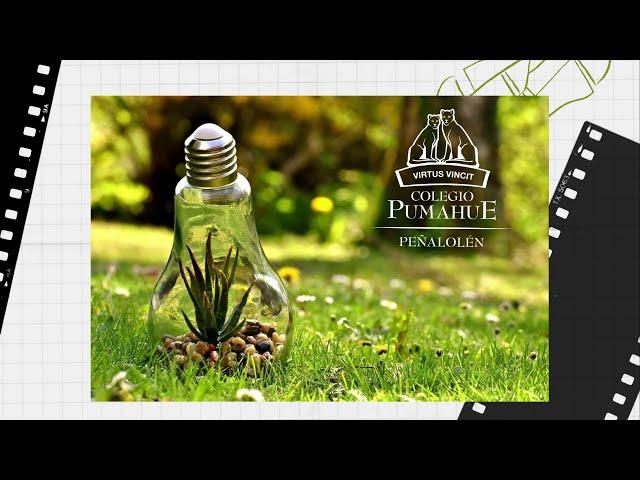 Concurso de fotografía ecológica Pumahue Peñalolén