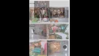 베일리수목동점-아이앤맘 아기사진전문점 리마인드웨딩