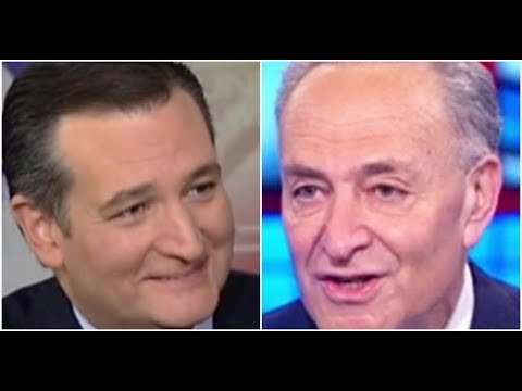 Ted Cruz CRUSHES Chuck Schumer Over Obamacare