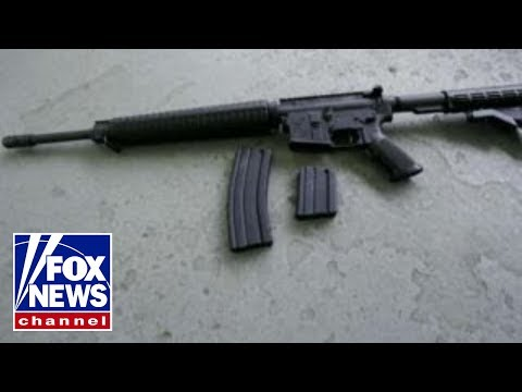 AR-15 at center of gun control debate after school shooting