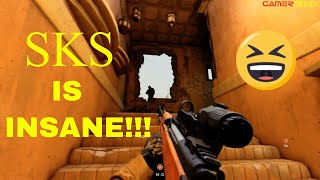 The SKS is a BEAST!!! in this Game!!-Insurgency Sandstorm