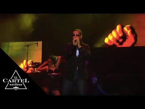 Daddy Yankee Nation