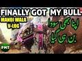 Finally Bought My Cheetah Bull of the Year | Memorable Vlog of Sohrab Goth Cow Mandi 2018 Karachi HD