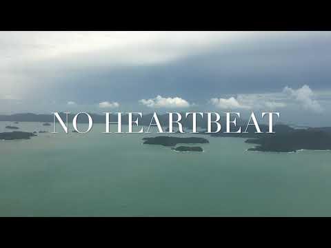 No Heartbeat - Singing Beyonce