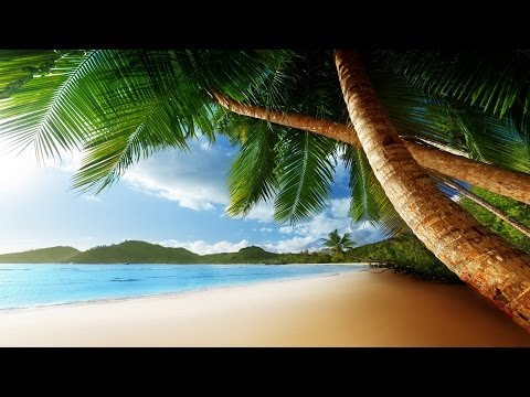 Tropical Island Music - Exotic Isles