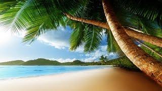 Tropical Island Music - Exotic Isles