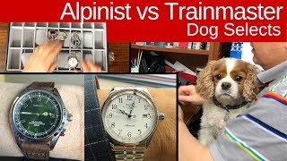 Seiko Alpinist vs Ball Trainmaster: Dog makes the selection