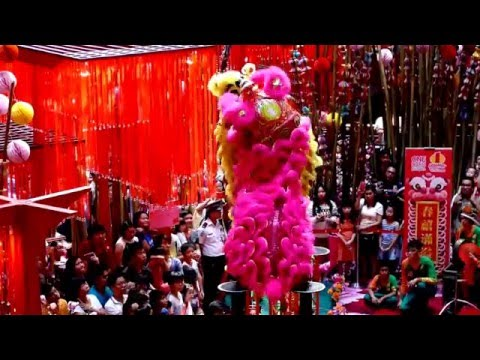 chinese new year lion dance 2016 - flying lion dance||2016 chinese new year parade & lion dance