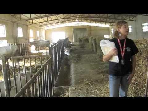 Italian Organic Farm Tour in Tuscany