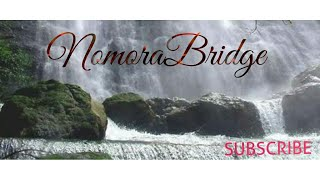 NoMora PicniC spot😊 ARUNACHAL PRADESH  #AssameseMixTube