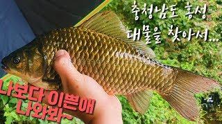 [어복TV 시즌1] 18화 충청남도 홍성 얼짱 몸짱 붕…
