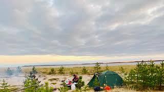 Летняя рыбалка на Белом море у Пертоминска. Треска. Зубатка. Навага