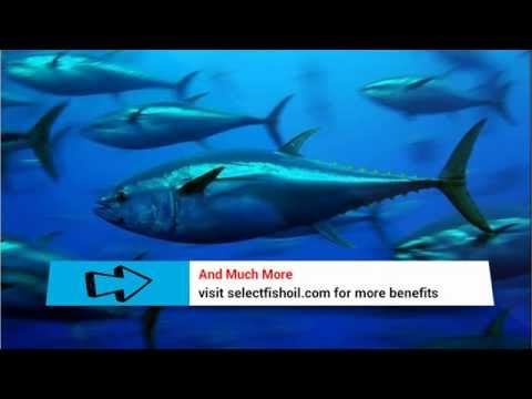 [EPA DHA Fatty Acids] - What Is The Best DHA EPA Omega 3 Fish Oil Ratio?