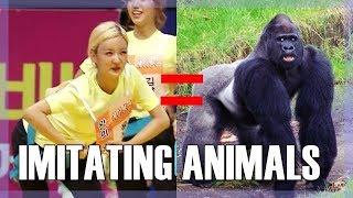 Baixar K-POP IDOLS IMITATING ANIMALS