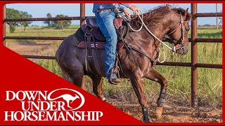 Clinton Anderson: Working With Hot and BusyMinded Horses  Downunder Horsemanship