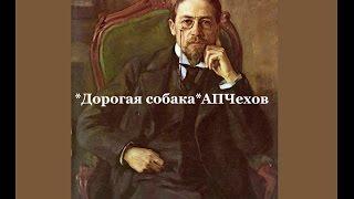 Рассказы Чехова А.П. /  Дорогая собака