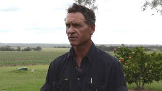 Over The Fence North: Farmers fight the sclerotinia scourge in Kingaroy