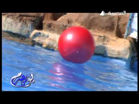 """Day in Egypt"" Egyptian Satallite TV program @Sheraton Miramar Resort El Gouna - Part 1"