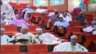 Senate Plenary, 19th April, 2018