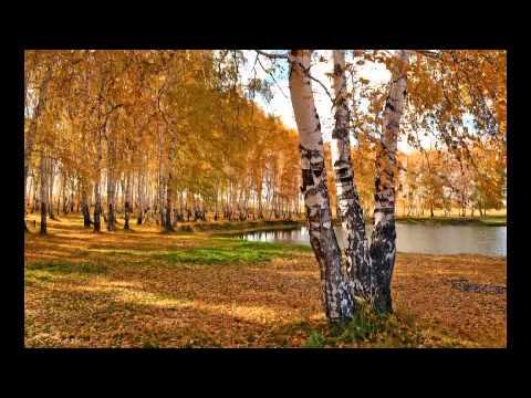 Видео клип песни Березонька