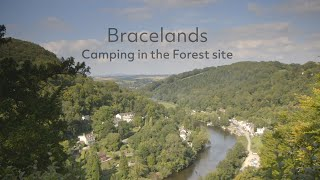 Bracelands Camping in the Forest site