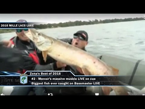 Best of the 2016 Bassmaster Elite Series