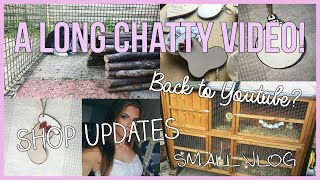 A LONG CHATTY VIDEO: Coming Back To Youtube? Shop Updates & A Short Vlog!