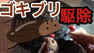 【悲しい結末】大阪京橋のマンホールに殺虫剤をかけたらゴキブリ出現