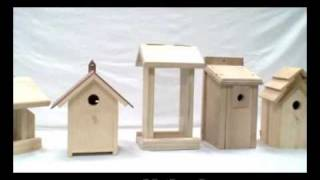 Bird Feeder And Bird House Supplier