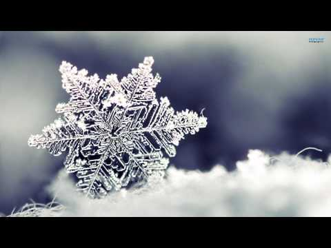 Ron Sexsmith - Maybe This Christmas [HD]
