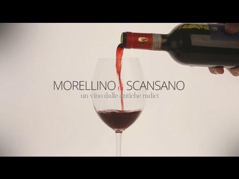 Morellino di Scansano, Un vino dalle antiche radici