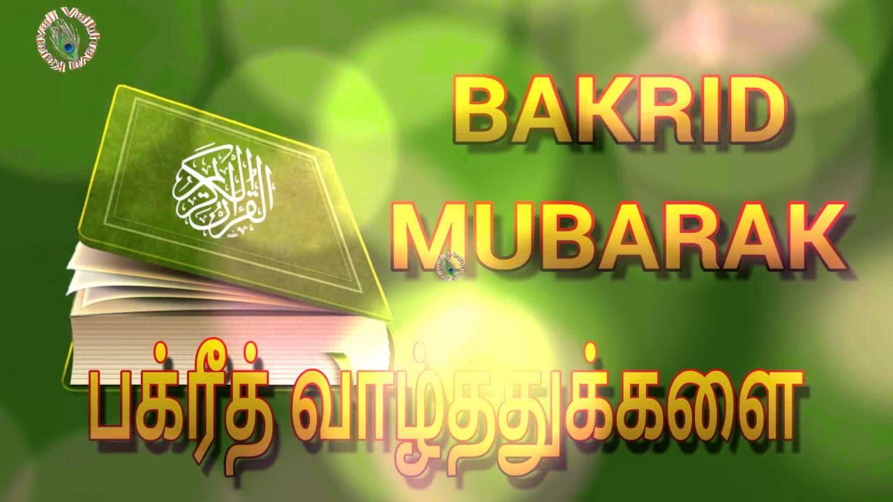 Eid ul adha tamilhappy bakrid 2017wishesgreetingsimages eid ul adha tamilhappy bakrid 2017wishesgreetingsimageswhatsapp videobakra eid mubarak kristyandbryce Choice Image