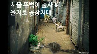 서울 뚜벅이 출사 포인트 #1
