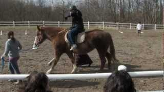 Lothlorien Therapeutic Riding Center (HD) Thumbnail