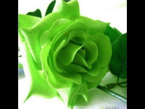 Light Green Roses Light Green Rose - You...