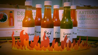 How To Make Your Own Hot Sauce at Home   Easy DIY Tutorial   GROW AND MAKE