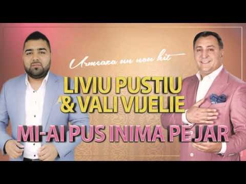 VALI VIJELIE si LIVIU PUSTIU - MI-AI PUS INIMA PE JAR (AUDIO OFICIAL 2015)