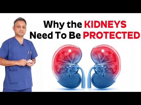 Why The Kidneys Need to Be Protected | How Kidney Works - Dr.Santosh Hedeu - CARE Hospitals