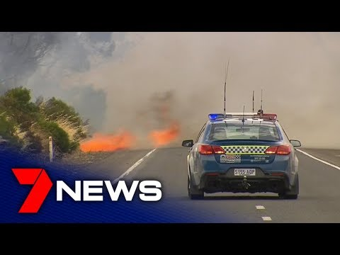 More Than 100 Schools Closed Ahead Of Catastrophic Bushfire Conditions | Adelaide | 7NEWS