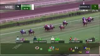 Vidéo de la course PMU PREMIO IAN PAICE