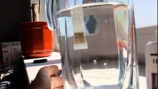 Оживление воды с помощью карманного фильтра Корал Майн(Узнай больше: Юнакова Татьяна http://vkontakte.ru/tatianayunakova Tel +7 920 5758313 Skype: dinylkin umnyi.mlm@gmail.com., 2013-09-11T04:19:10.000Z)