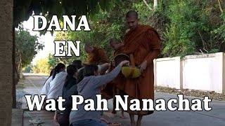 Dana en Wat Pah Nanachat (English Subtitles)