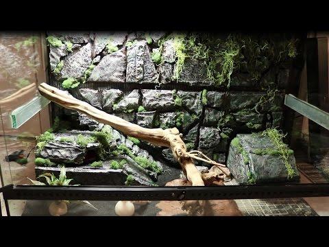 Insane Custom Leopard Gecko Tank Build Youtube