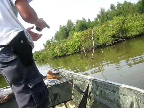 Shooting Asian Carp 71