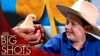 🐔 Meet 11 Year Old Chicken Farmer Max | Little Big Shots
