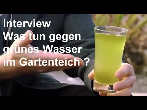 gr nes wasser im gartenteich hintergrundwissen zum thema gr ner gartenteich video youtube. Black Bedroom Furniture Sets. Home Design Ideas